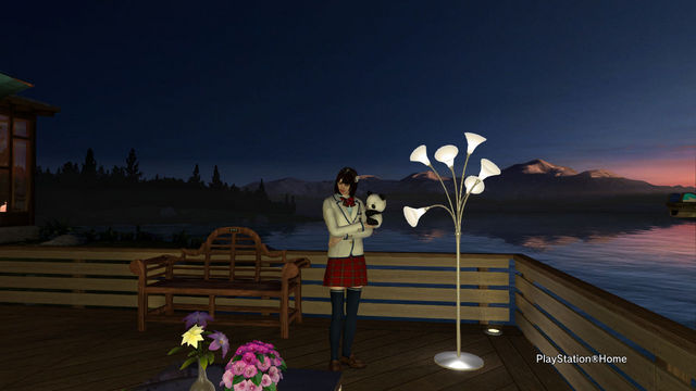 PlayStation(R)Home Picture 2012-6-21 02-05-31.jpg