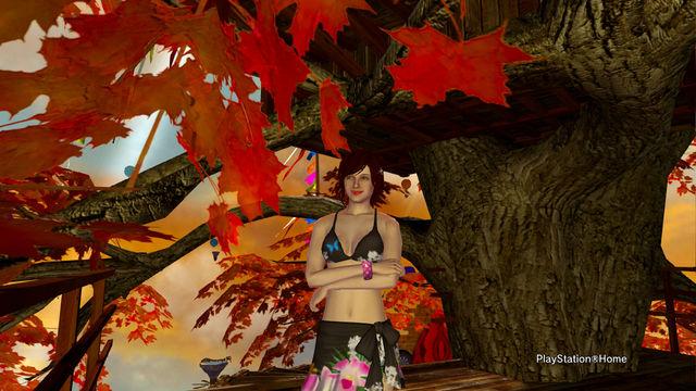 PlayStation-Home画像 2012-3-7 01-39-07.jpg