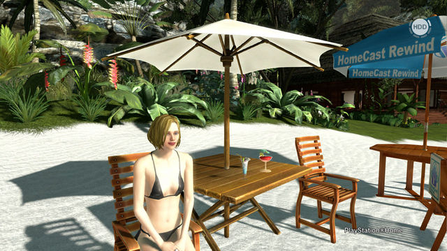 PlayStation(R)Home Picture 2012-4-30 01-51-00.jpg