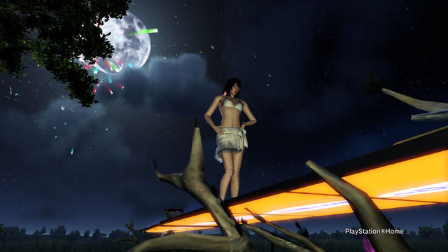 PlayStation(R)Home Picture 2012-7-3 01-08-22.jpg