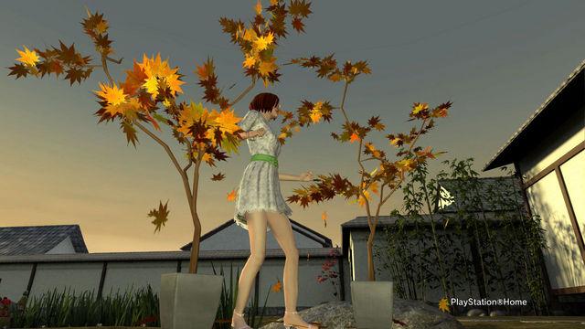 PlayStation-Home画像 2012-3-7 03-07-39.jpg