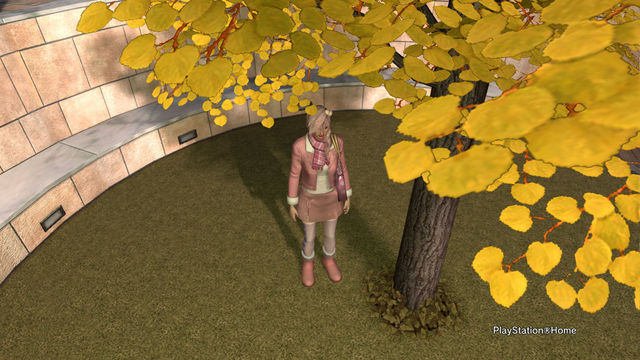 PlayStation®Home画像 2011-11-11 08-15-02.jpg